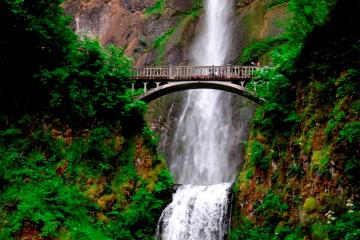 columbia-river-gorge-waterfalls-tour-from-portland-in-portland-196180